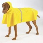 34 d2 150x150 Áo mưa danh cho chú chó   AMC 03